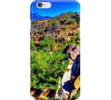 Four Peaks from Across the Sonoran Desert iPhone Case/Skin