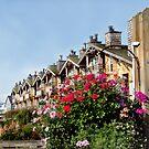 Flower Apartments by Merilyn