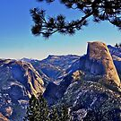 Half Dome from Washburn Pt. by Nancy Richard