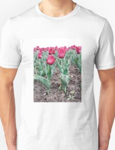 Red tulips 7 Unisex T-Shirt