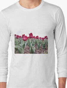 Red tulips 8 Long Sleeve T-Shirt