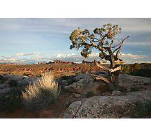 Salt Valley Overlook Photographic Print