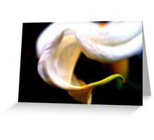 New Flower Greeting Card