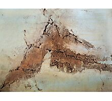All Cracked Up!  Photographic Print