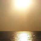 Ocean City 12 by Nancy Polanski