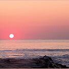 Ocean City 20 by Nancy Polanski