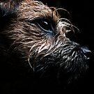 Wurston, Blea Tarn by Mark  Coward