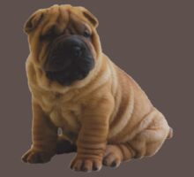 Shar Pei Kids Clothes