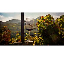 A Taste of the Vineyards Photographic Print