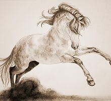 """To Dance"" Sepia by SD 2010 Photography & Equine Art Creations"