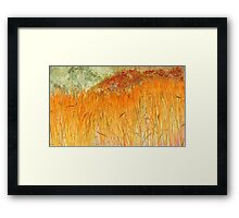 Golden Autumn-Available As Art Prints-Mugs,Cases,Duvets,T Shirts,Stickers,etc Framed Print