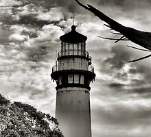 Pigeon Point Lighthouse by Bob Wall