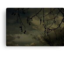 Darksome Canvas Print