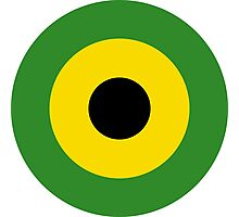 Jamaica Air Force Roundel Photographic Print