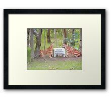 Aussy comedt a dingoes breakfast Framed Print
