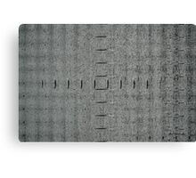 Gray Matter Canvas Print