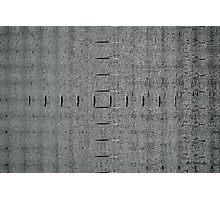 Gray Matter Photographic Print