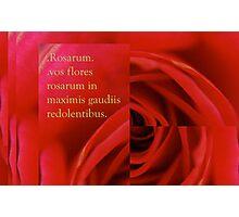 Rosarum Photographic Print
