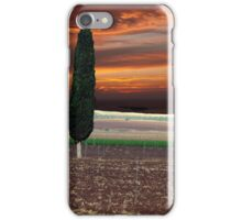 Stormy Day Cypress iPhone Case/Skin