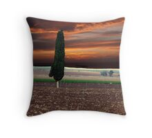 Stormy Day Cypress Throw Pillow