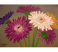 Gerberas Photographic Print
