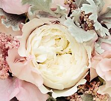 Delicate by Lynne Morris