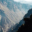 Colca Canyon by wigs
