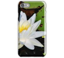 Fragrant Water Lily II iPhone Case/Skin