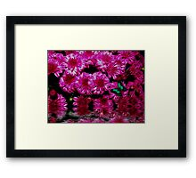 Pink Passion Framed Print