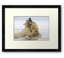 Water Sport Framed Print
