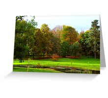 Sunlit Colours Greeting Card