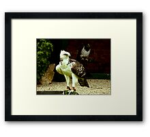Ready for Hunting Framed Print
