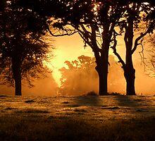 Gladiatorial Sunrise by Neil Cox