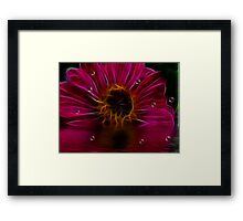 Sweet Kisses After Midnight Framed Print