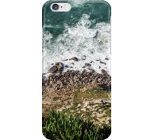 Surfscape iPhone Case/Skin