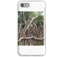 Fencing iPhone Case/Skin