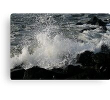 Black Rock Canvas Print