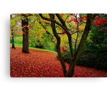 Autumn Is A Painter Canvas Print