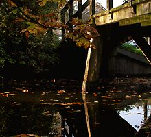 Autumn along the canals: 1 of 5 by MooseMan