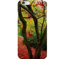 Autumn Is A Painter iPhone Case/Skin