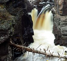 Temperance River State Park, Lake Superior by Robert Stone