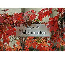 street sign in Debrecen Photographic Print