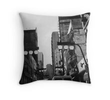 oriental quarters Throw Pillow