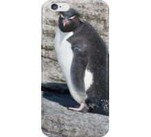 Curious Rockhopper iPhone Case/Skin
