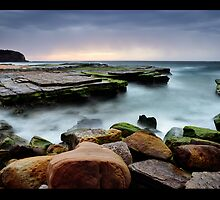 Another From My Turimetta Study by Brent Pearson