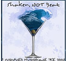 Shaken Not Beat- I Survived Hurricane Ike by Samitha Hess