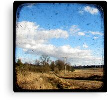 Bush Telegraph Canvas Print