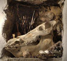 Memento Mori by Dick Pountain