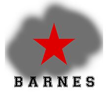 BARNES Photographic Print