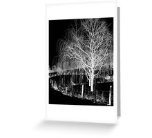 Night Willow Greeting Card